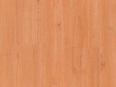 linha-spot-padrao-maple-verona-842x533